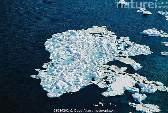 Aerial view of melting pack ice, Canadian Arctic, AERIAL,BLUE PLANET,DA,HORIZONTAL,ICE,MELTING,NORTH AMERICA,PACK,SEA,SPRING ,AERIALS, Doug Allan
