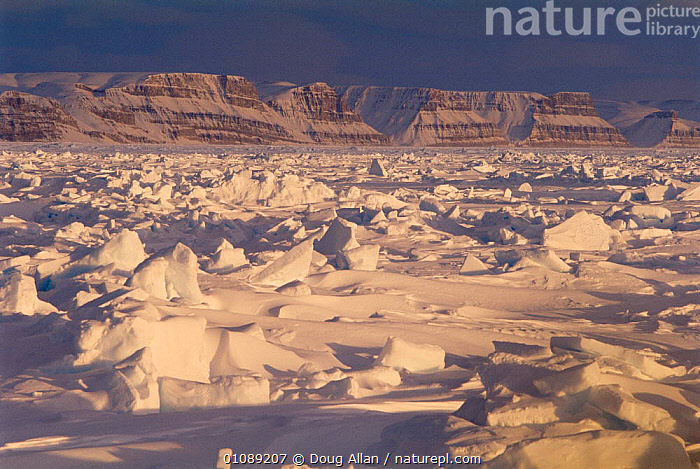 Sunset on frozen pack ice, Canadian Arctic, ARCTIC,CANADA,DUSK,FROZEN,ICE,LANDSCAPES,NORTH AMERICA,PACKICE,POLAR,SNOW,SUMMER,SUNSET, Doug Allan
