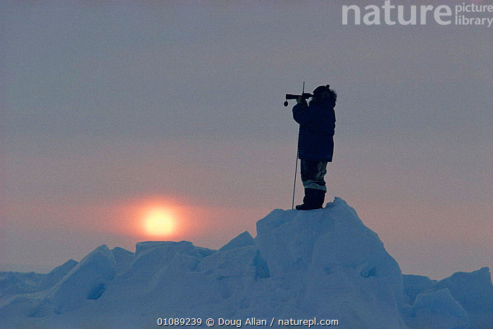 Inuit hunter on look out for Polar bears, Canadian Arctic, ARCTIC,CANADA,CULTURES,DUSK,EVENING,GUARDING,ICE,LOOKOUT,NORTH AMERICA,PEOPLE,POLAR,SUN,SUNSET,TRIBAL,TRIBES,WATCHING, Doug Allan