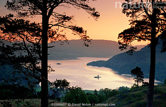 Dawn over Ullswater, Lake District, Cumbria, UK, EUROPE,LAKES,LANDSCAPES,NP,SUNRISE,National Park,ENGLAND, David Noton