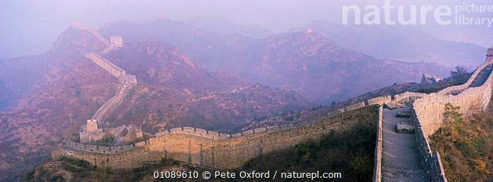 The Great Wall of China landscape, as seen from Jinshanling, China, ASIA,BUILDINGS,CHINA,CULTURES,HORIZONTAL,LANDSCAPES,PANORAMIC,Catalogue1, Pete Oxford
