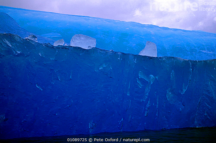 Blue iceberg at San Raphael Glacier, Chilean Fjords, Chile, South America, BLUE,GLACIAL,GLACIERS,HORIZONTAL,ICE,ICEBERGS,SOUTH AMERICA,WATER,Geology,SOUTH-AMERICA,Catalogue1, Pete Oxford