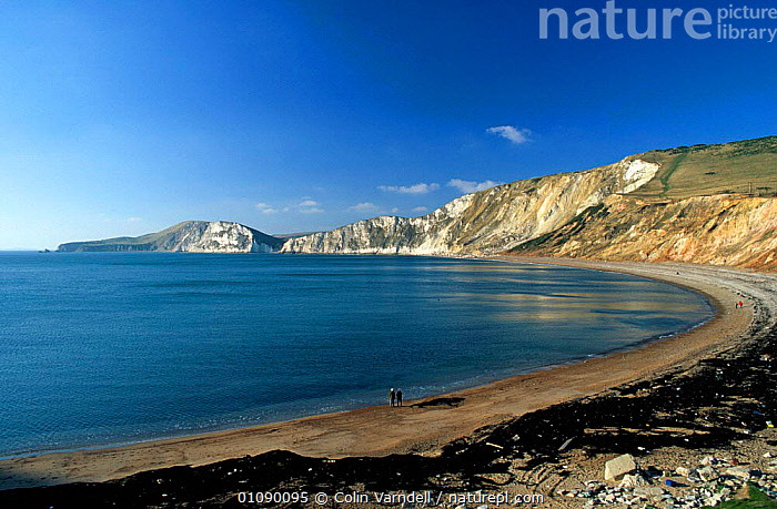 Worbarrow Bay with people walking along beach, Dorset, England., BEACHES,CLIFFS,COASTS,EUROPE,LANDSCAPES,UK,United Kingdom,Geology,British,ENGLAND, United Kingdom, United Kingdom, United Kingdom,,Dorset and East Devon Coast, UNESCO World Heritage Site,, Colin Varndell