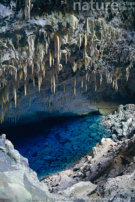 Blue lagoon cave, Mato Grosso do Sul state, Bonito, Brazil, South America  ,  BLUE,CAVE,CAVES,DGO,DO,GEOLOGY,LAGOON,LAKES,MATO,RESERVE,ROCK FORMATIONS,SOUTH AMERICA,STALACTITES,VERTICAL,WATER,SOUTH-AMERICA  ,  Daniel Gomez