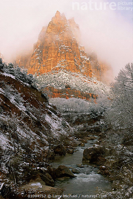 Winter landscape with fog above stream at Zion National Park, Utah, USA  ,  CLIFFS,COLD,Fog,LANDSCAPES,MIST,NORTH AMERICA,NP,RIVERS,ROCK FORMATIONS,SNOW,streams,USA,VERTICAL,WATER,WINTER,Geology,National Park  ,  Larry Michael