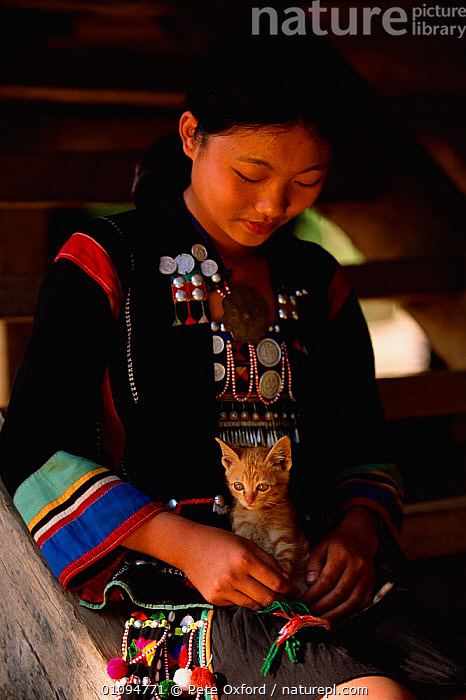Aini woman in traditional costume with pet kitten Xishangbanna area, Yunnan, China. Eethnic minority group 2002  ,  AREA,ASIA,CAT,CLOTHES,COSTUME,CUTE,DETAIL,DOMESTIC,ETHNIC,GROUP,JEWELLERY,KITTEN,MAMMALS,PEOPLE,PETS,PO,TRADITIONAL,TRIBES,VERTICAL,WOMAN,CHINA  ,  Pete Oxford