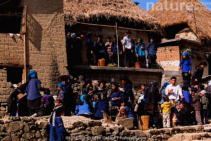 Hani group, communal eating near Grand terraces. Yuanyang, Yunnan, China 2001. Hani wear dark embroidered clothing  ,  ASIA,BUILDINGS,FAMILIES,FEEDING,GROUP,GROUPS,HANI,PEOPLE,PO,TRADITIONAL,TRIBES,CHINA  ,  Pete Oxford