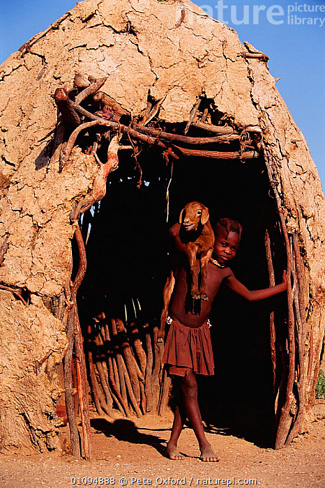 Himba girl holding goat outside hut Kaokoland, Namibia 2002 1999.  ,  AFRICAN,BUILDINGS,CARRYING,CHILDREN,GIRL,GOATS,HIMBA,HUT,KAOKOLAND,LIVESTOCK,MAMMALS,PEOPLE,PO,SOUTHERN AFRICA,TRIBES,VERTICAL  ,  Pete Oxford