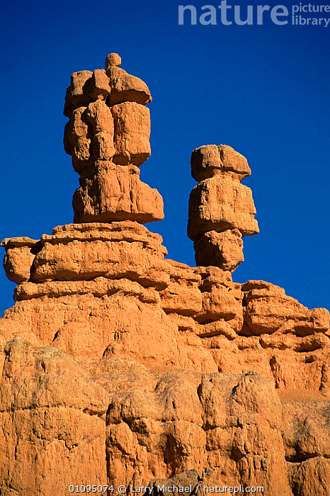 Sandstone hoodoos at Bryce Canyon National Park, Utah, USA  ,  ABSTRACT,arty shots,EROSION,hoodoo,LANDSCAPES,NORTH AMERICA,NP,ROCK FORMATIONS,ROCKS,sandstone,shapes,USA,VERTICAL,Geology,National Park  ,  Larry Michael