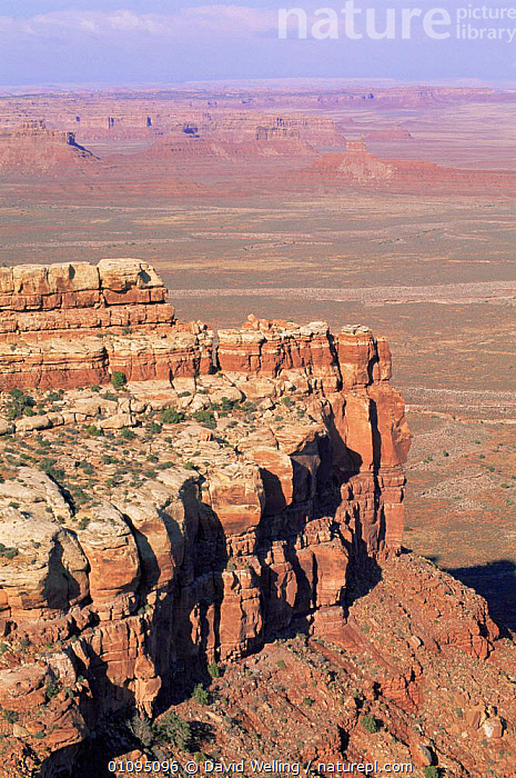 Overlooking Cathedral Valley in Capitol Reef National Park, Utah, USA  ,  canyons,CLIFFS,DESERTS,EROSION,LANDSCAPES,NORTH AMERICA,ROCK FORMATIONS,ROCKS,sandstone,USA,valleys,VERTICAL,Geology  ,  David Welling