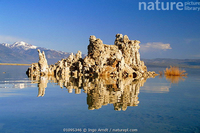Tufa limestone rock formations at edge of Mono Lake, Inyo National Park, California, USA  ,  ARNDT,FORMATIONS,GEOLOGY,HORIZONTAL,IAR,LAKES,LANDSCAPES,LIMESTONE,NORTH AMERICA,ROCK,ROCK FORMATIONS,ROCKS,WATER,USA  ,  Ingo Arndt