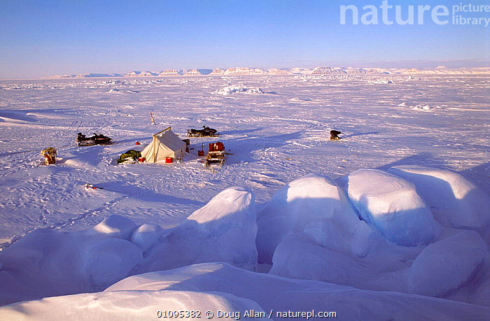 Inuit camp on spring sea ice, Admiralty Inlet, Baffin Island, Canadian Arctic, NW Territories  ,  ARCTIC,CAMPS,CANADA,CULTURES,FROZEN,HUNTING FOOD,ICE,LANDSCAPES,NORTH AMERICA,PEOPLE,POLAR,SKIDOOS,SNOW,SPRING,TRIBES  ,  Doug Allan
