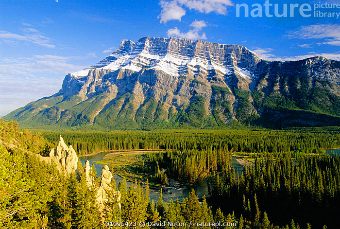 Mount Rundle and the Bow Valley, Banff National Park, Alberta Canada  ,  BANFF,CONCEPTS,HORIZONTAL,LANDSCAPES,MOUNTAINS,NATIONAL PARK,NORTH AMERICA,NP,PEACEFUL,PLANTS,RIVERS,TREES,WOODLANDS,CANADA,,Canadian Rocky Mountain Parks World Heritage Site, UNESCO World Heritage Site,Rocky Mountains,Rockies,NP,Reserve,  ,  David Noton