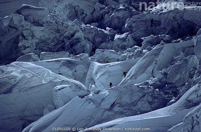 Climbers Reinhold Messner and Peter Habeller negotiate icefall at 1200 metres. Mt. Everest, Himalayas, Nepal  ,  ADVENTURE,ASIA,CLIMBERS,CLIMBING,DIFFICULT,EVEREST,ICE,ICEFALL,INDIAN SUBCONTINENT,LDI,LEO,MALES,METRES,MOUNTAIN,MOUNTAINEERING,MOUNTAINS,PEOPLE,PLANTS,SNOW,SURVIVAL,SPORTS ,INDIAN-SUBCONTINENT  ,  Leo & Mandy Dickinson