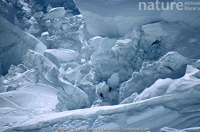 Climbers Reinhold Messner and Peter Habeller dwarfed by Khumbu icefall block. Mt. Everest, Himylayas, Nepal  ,  CLIMBERS,CLIMBING,EVEREST,HIMYLAYAS,ICE,ICEFALL,INDIAN SUBCONTINENT,KHUMBU,LDI,MOUNTAIN,MOUNTAINEERING,MOUNTAINS,PEOPLE,SNOW,ASIA,PLANTS  ,  Leo & Mandy Dickinson
