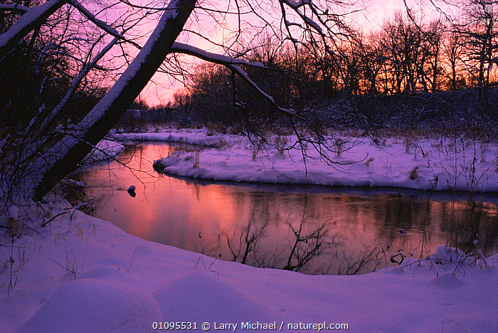 Frosty early morning river landscape in Winter, Souppernorf Creek, Wisconsin USA  ,  ATMOSPHERIC,COLD,DAWN,FROST,Frozen,ICE,LANDSCAPES,NORTH AMERICA,PEACEFUL,RIVERS,SNOW,SUNRISE,TREES,USA,WATER,WINTER,Concepts,Weather,Plants  ,  Larry Michael