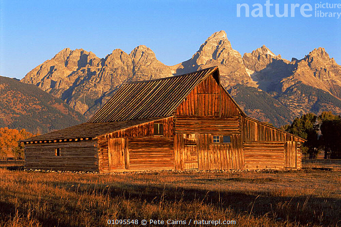 Historic old barn at Moulton Range, Grand Teton National Park, Wyoming, USA  ,  attraction,barns,BUILDINGS,FARMLAND,farms,HIGHLANDS,landmark,LANDSCAPES,MOUNTAINS,NORTH AMERICA,NP,OLD,RESERVE,USA,National Park ,Rocky Mountains,  ,  Pete Cairns