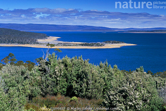 Great Lake view from north of Breona, Tasmanian Wilderness World Heritage area,  Australia. Central Plateau conservation area, HORIZONTAL,LAKE,LAKES,LANDSCAPE,MARTIN,MGA,RESERVE,SCENIC,WILDERNESS,AUSTRALIA, Martin Gabriel