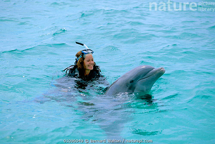Charlotte Uhlenbroek swimming with Bottlenose dolphin during filming for BBC TV series Talking With Animals, Bahamas, 2002, BW,CETACEANS,COMMUNICATION,DOPHINS,HORIZONTAL,MAMMALS,MARINE,PEOPLE,SEA,SWIMMING,TROPICAL,WOMAN, Bernard Walton
