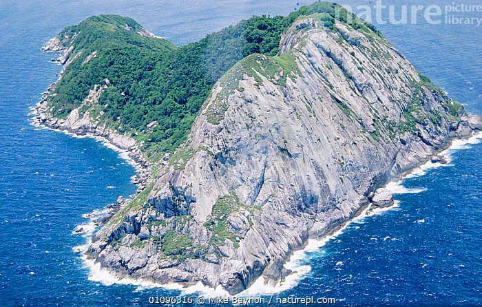 Isla Quemade Grande, Snake Island, Brazil  island with densest population of snakes on earth. All Golden lancehead snakes  ,  AERIAL,HORIZONTAL,ISLANDS,LANDSCAPES,MBE,MIKE,PACIFIC,SOUTH AMERICA ,AERIALS,SOUTH-AMERICA  ,  Mike Beynon