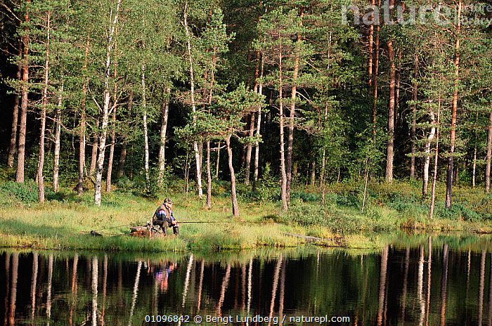 Man fishing in lake, Sweden, ANGLER,ANGLING,BLU,CONCEPTS,CONIFEROUS,FISHERMAN,HORIZONTAL,LAKES,LANDSCAPES,LEISURE,LUNDBERG,PEACEFUL,PEOPLE,PLANTS,SCANDINAVIA,TREES,Europe, Scandinavia, Bengt Lundberg