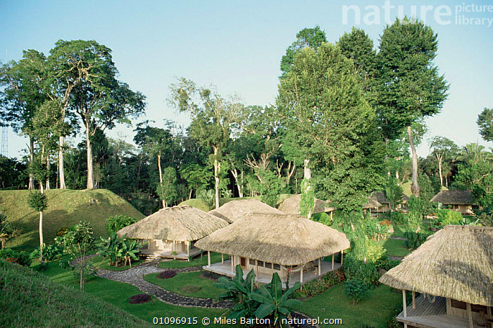 Chan Chich tourist lodge, Belize, Central America. 1990, BUILDINGS,CENTRAL AMERICA,ECOLODGE,ECOTOURISM,HOMES,HOTELS,LODGES,TOURISM,TRADITIONAL,TROPICAL RAINFOREST,CENTRAL-AMERICA, Miles Barton