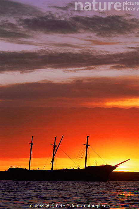 Wreck of Lady Elizabeth at sunset, Stanley Harbour, East Falkland Island, Falkland Island, ATLANTIC OCEAN,BOATS,COASTAL WATERS,COASTS,DUSK,MARINE,SEA,SILHOUETTES,SOUTH AMERICA,SUNSET,VERTICAL,WATER,SOUTH-AMERICA, Pete Oxford