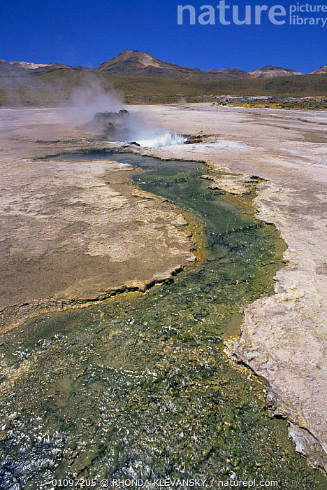 Tatio geysers in highlands, near San Pedro, Northern Chile, South America, GEOTHERMAL,HIGHLANDS,LANDSCAPES,MOUNTAINS,SOUTH AMERICA,VERTICAL,WATER,WETLANDS,Geology,SOUTH-AMERICA, RHONDA KLEVANSKY