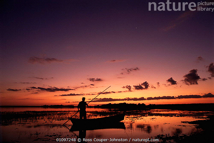 Gaucho poling canoe Ibera Marshes National Reserve, North Argentina, South America, ATMOSPHERIC,BOATS,CULTURES,DUSK,HORIZONTAL,MARSHES,PEOPLE,RESERVE,SILHOUETTES,SOUTH AMERICA,SUNSET,TRADITIONAL,TRIBES,WATER,WETLANDS,SOUTH-AMERICA, Ross Couper-Johnston