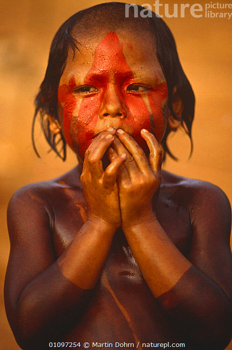 Kayapo indian boy with body painted with plant dye, tribal tradition, Amazon Basin, Brazil. 1994, CHILD,CHILDREN,CULTURES,FACES,JUVENILE,MALES,PEOPLE,PORTRAITS,SOUTH AMERICA,TRADITIONAL,TRIBES,VERTICAL,YOUNG,SOUTH-AMERICA, Martin Dohrn