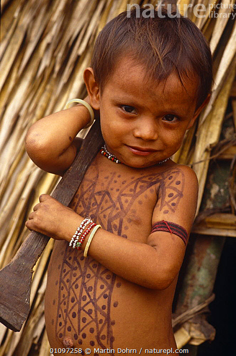 Young Kayapo indian boy with body painted with plant dye, tribal tradition, Amazon Basin, Brazil 1994, CHILD,CHILDREN,CULTURES,HOMES,JUVENILE,MALES,PEOPLE,PORTRAITS,SOUTH AMERICA,TRADITIONAL,TRIBES,VERTICAL,YOUNG,SOUTH-AMERICA, Martin Dohrn