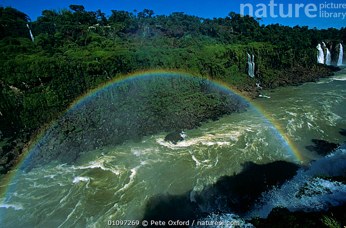 Iguazu Falls with rainbow, from Brazilian side, border of Brazil & Argentina South America, HORIZONTAL,LANDSCAPES,RAINBOWS,RIVERS,SOUTH AMERICA,SPRAY,TROPICAL RAINFOREST,WATER,WATERFALLS,WETLANDS,Weather,SOUTH-AMERICA, Pete Oxford