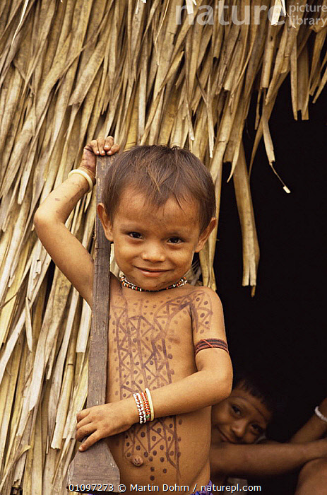 Arara Indian boy outside hut home, Xingu River, Amazon Basin, Brazil, South America, 1994, CHILD,CHILDREN,CULTURES,CUTE,FACES,HOMES,PEOPLE,PORTRAITS,SOUTH AMERICA,TRADITIONAL,TRIBES,TROPICAL RAINFOREST,VERTICAL,WETLANDS,SOUTH-AMERICA, Martin Dohrn