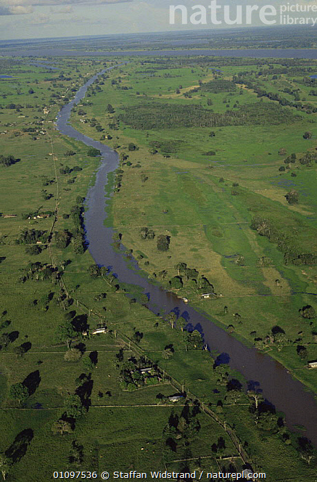 Aerial view of Amazon river beds and houses, Manaus, Brazil, South America, AERIALS,HABITAT,HOMES,LANDSCAPES,PEOPLE,RIVERS,SOUTH AMERICA,TREES,VERTICAL,WETLANDS,Plants,SOUTH-AMERICA, Staffan Widstrand