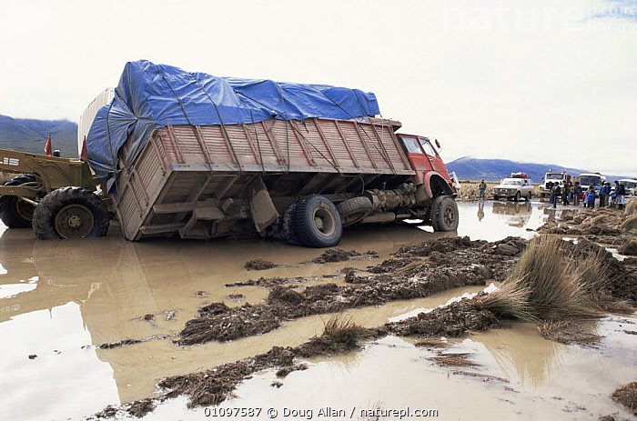 Truck stuck in mud after heavy rains, Bolivia, South America, FLOODING,LORRIES,MUD,ROADS,SOUTH AMERICA,TIPPED,TRACKS,VEHICLES,WATER,WEATHER,WET SEASON,SOUTH-AMERICA, Doug Allan