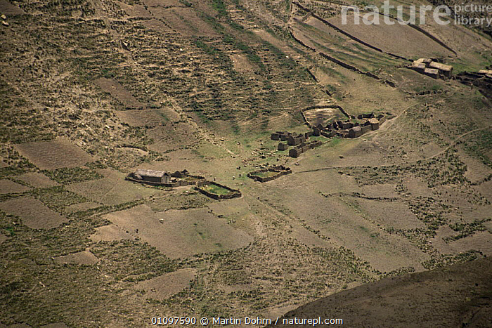Aerial view of Quechua settlement and fields in Andes, Bolivia, South America, AERIALS,BUILDINGS,CROPS,HIGHLANDS,HOMES,LANDSCAPES,LIVESTOCK,MOUNTAINS,PEOPLE,SLOPES,SOUTH AMERICA,TRADITIONAL,TRIBES,SOUTH-AMERICA, Martin Dohrn