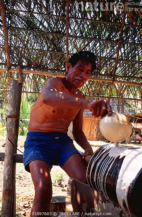 Man curing rubber in traditional way, Tambopata river, Peru, South America, CULTURES,EXPORT,HARVESTING,MAN,PEOPLE,RUBBER,SOUTH AMERICA,TAPPING,TRADE,TRADITIONAL,VERTICAL,WORKING,SOUTH-AMERICA, JIM CLARE