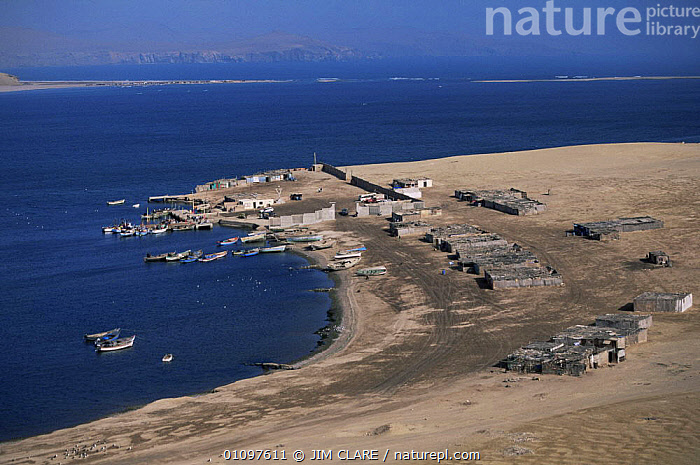 Aerial view of coastal fishing village, Laguna Grande, Paracas NP, Peru, South America, AERIALS,BOATS,FISH,HOMES,LAKES,LANDSCAPES,NP,PEOPLE,RESERVE,SHORELINE,SOUTH AMERICA,TRADITIONAL,VILLAGES,WATER,WETLANDS,National Park,SOUTH-AMERICA, JIM CLARE