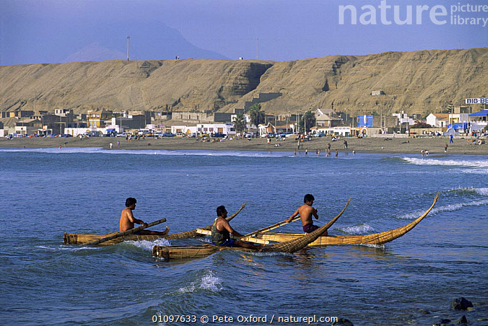 Traditional fishing craft, Caballitos de Tortora, Huanchaco Trujillo, Peru, BEACHES,BOATS,BUILDINGS,CANOES,COASTAL WATERS,COASTS,CULTURES,FISHING,GROUPS,MALES,MARINE,PEOPLE,POPULATION,SOUTH AMERICA,TRADITIONAL,WAVES,SOUTH-AMERICA,OPEN-BOATS, BOATS, BOATS, Pete Oxford