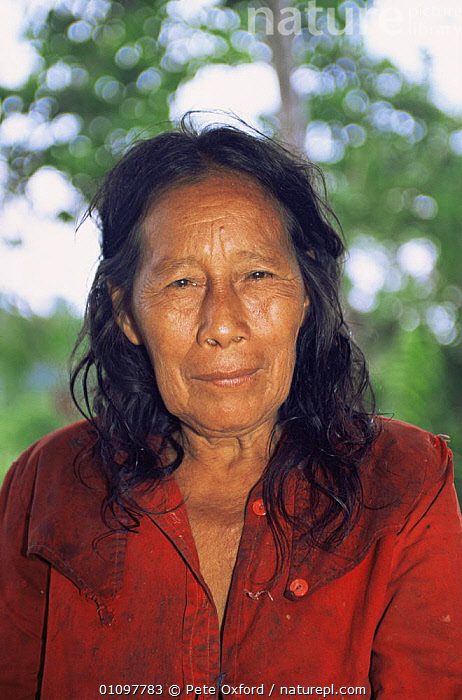 Zaparo indian woman, only 24 Zaporas left, Llanchamacocha, Ecuadorian Amazon, South America, CULTURES,FACES,HEADS,PEOPLE,PORTRAITS,SOUTH AMERICA,TRADITIONAL,TRIBES,VERTICAL,WOMAN, Pete Oxford