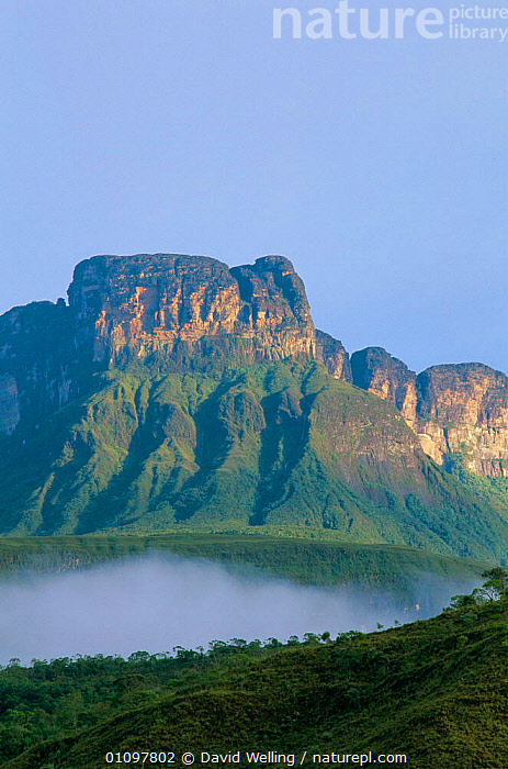Anyan Tepui from Carrao river, Sky Islands Area, Canaima National Park, Venezuela, ROCK,SOUTH,TEPUIS,ROCK FORMATIONS,CLOUDS,MOUNTAINS,SCENICS,ROCKS,HIGHLANDS,TROPICAL,AMERICA,FLAT,RESERVE,LANDSCAPES,VERTICAL,Weather,Geology,SOUTH-AMERICA, David Welling