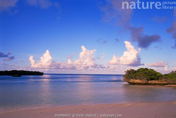 Looking across West Channel, Aldabra Atoll, Seychelles, Indian Ocean, ASIA,BEACHES,COASTAL WATERS,COASTS,INDIAN OCEAN,ISLANDS,LANDSCAPES,MARINE,SEA,SEYCHELLES,SHORELINE,TROPICAL,INDIAN OCEAN ISLANDS, Pete Oxford
