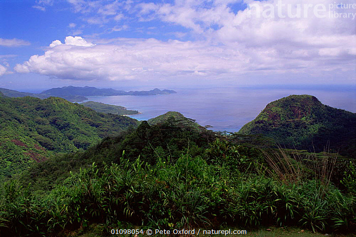 View from Old Mission, Mahe island, Seychelles, Indian Ocean, ASIA,COASTAL WATERS,COASTS,HIGHLANDS,INDIAN OCEAN,ISLANDS,LANDSCAPES,MARINE,SEA,SEYCHELLES,TROPICAL,TROPICAL RAINFOREST,INDIAN OCEAN ISLANDS, Pete Oxford