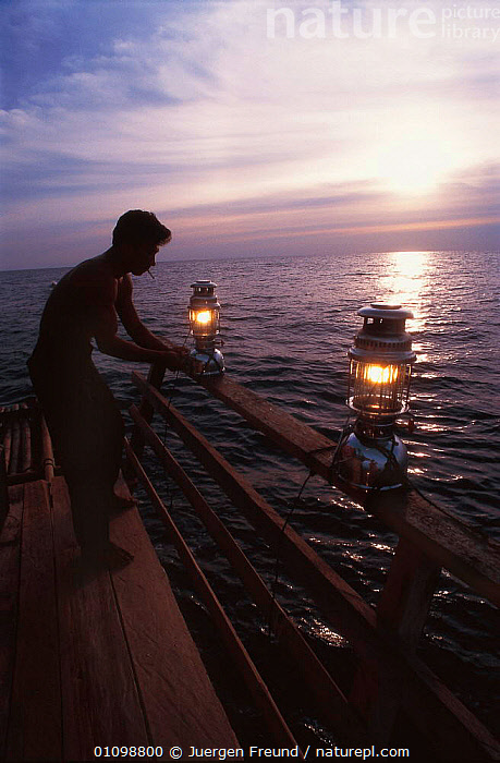 Bamboo raft occupied by Rakit custodian who attracts fish from deep waters with lanterns at night for fishermen to catch at dawn. Boats pay to fish in a Rakit area. 2000 Indonesia  ,  ASIA,FISHING,INDO PACIFIC,LIGHTS,MAN,MARINE,NIGHT,PEOPLE,SOUTH-EAST-ASIA  ,  Jurgen Freund