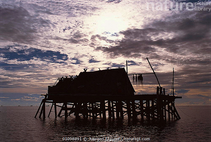 Stilt house at sunset Arenas, Cagayancillo, Philippines  ,  ASIA,BUILDING,BUILDINGS,HOMES,HORIZONTAL,HOUSE,HOUSES,HUTS,JFR,SEA,SILHOUETTE,SILHOUETTES,SOUTH EAST ASIA,STILTS,SULU SULAWESI,SUNSET,SOUTH-EAST-ASIA  ,  Jurgen Freund