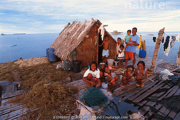 Family of seaweed growers. Arenas, Cagayancillo, Philippines. Seaweed used to produce carageen, a binding agent used extensively in cosmetic products. 2000  ,  ALGAE,ASIA,BUILDING,BUILDINGS,CARAGEEN,CROPS,DRYING,FAMILIES,FAMILY,HORIZONTAL,HOUSE,HOUSES,JFR,PEOPLE,PLANTS,PRODUCE,PRODUCTS,SEA,SEAWEED,SEAWEEDS,SOUTH EAST ASIA,SULU SULAWESI,SOUTH-EAST-ASIA  ,  Jurgen Freund