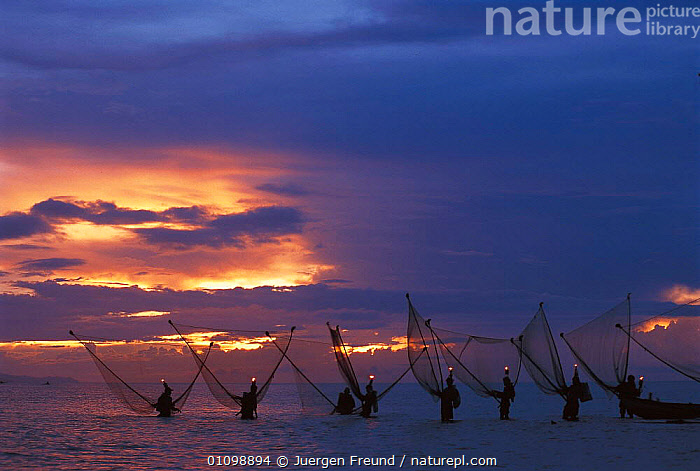 Shrimp fishermen with nets and lights wading in sea at night. Donsol, Sorsogon, Philippines. 2000  ,  ASIA,FISHERIES,FISHERMEN,FISHING,GROUP,GROUPS,HORIZONTAL,JFR,LIGHTS,NETS,NIGHT,PEOPLE,SEA,SEAS,SOUTH EAST ASIA,SULA,SULAWESI,SULU SULAWESI,TRADITIONAL,SOUTH-EAST-ASIA,INDONESIA  ,  Jurgen Freund