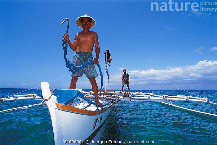 Whale shark hunter on boat with fish hook, Pamilacan, Bohol, Philippines. 1997  ,  ASIA,BOATS,FISH,FISHERIES,FISHING,HOOK,HORIZONTAL,HUNTER,HUNTING,JFR,MAN,MARINE,PEOPLE,SHARKS,SOUTH EAST ASIA,SULAWESI,SULU,SULU SULAWESI,TRADITIONAL,WHALE,SOUTH-EAST-ASIA,INDONESIA  ,  Jurgen Freund