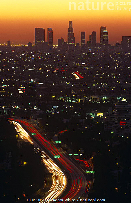 Los Angeles at dawn with sun rising through smog. California, USA, 2000  ,  CITIES,DAWN,LANDSCAPES,LIGHTS,NORTH AMERICA,SKY,SUN,USA,VERTICAL  ,  Adam White