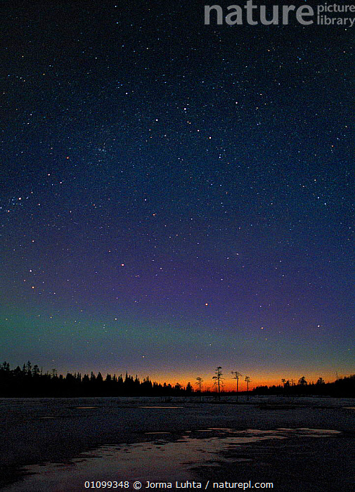 Aurora borealis colours in midnight sky, northern Finland, April  ,  AMAZING,ARCTIC,COLOURFUL,COLOURS,EUROPE,FINLAND,HEMISPHERE,HORIZONTAL,JLU,LANDSCAPES,MIDNIGHT,NATURAL,NIGHT,OUTSTANDING,PHENOMENON,PLANTS,SCANDINAVIA,SKY,STARS,TREES,VERTICAL  ,  Jorma Luhta